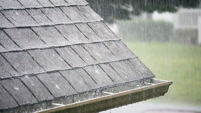 Naperville Gutter Repair Company